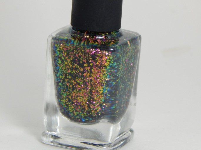 ILNP_Electric_Carnival